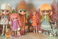 (andersonsmith.katie) Tags: blythe doll shelf display collection ice rune wendy weekender middie pixie peaceful simply mango licca petite cocoa butter calico critters christmas holiday