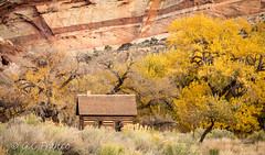 Fruita School House (Gracelyn Franco Photography) Tags: red ut utah fruitaschoolhouse capitolreefnput capitolreef nationalparks gracelynfranco canon canon7d fall foliage