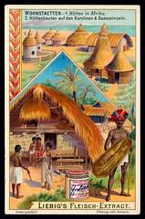 Liebig Tradecard S753 - Dwellings in Africa and Samoa (cigcardpix) Tags: tradecards advertising ephemera vintage liebig chromo architecture