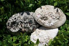 Three Pebbles (Mosaic Magpie) Tags: adventure pebble