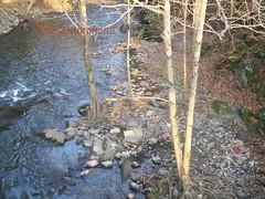 100_1936 (Kris Drummond) Tags: usa mill nature waterfall unitedstates pennsylvania january hike sullivan oldmill 2012 brinker sciota brinkers brinkersmill