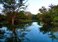 (blogspfastatt (+3.000.000 views)) Tags: blue lake reflection nature beauty landscape nice flickr lac bleu reflets earthday pfastatt natureselegantshots blogspfastatt