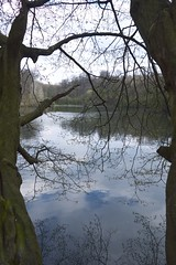 (Chazodude) Tags: park trees tree leaves forest spring woods raw belgium tervuren