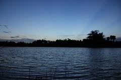 IMG_6754 (Kangeyan Kumaran) Tags: photography kulam marapaalayam ashokn