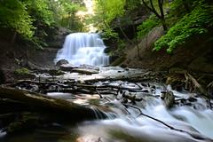 DSC_9275 (Luella Maria) Tags: falls waterfalls decew