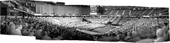 Naomi's Commencement Panorama 2 (sjrankin) Tags: panorama ir edited graduation naomi infrared sacramento commencement grayscale csus sacramentocalifornia 24may2013