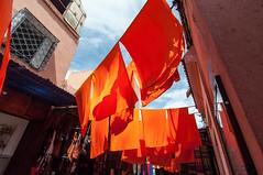 DSC_6750.jpg (Pompilio Valerio) Tags: orange color colore silk morocco marocco marrakech seta arancione