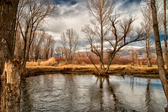 Lower Owens River (Cat Connor) Tags: california trees sky mountains nature water clouds river landscape day cloudy scenic sierranevada bishop easternsierra