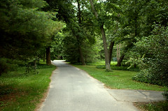 Pathway (Ed Dertinger) Tags: bca bayardcuttingarboretum 2013 greatriverny 062013 35mmf18afsdxnikkor 06302013