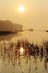 Smog, brume et chaud soleil d't... /Smog, fog and warm summer sun... (Pentax_clic) Tags: summer fog river smog pentax july rivire t juillet herb brouillard brume herbe kx robertwarren