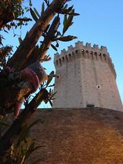 Toh, una torre! (lamarchesinavaleria) Tags: mare grigio torre estate rosa valeria castello vacanze pupazzo sanbenedettodeltronto passeggiata nobile marchesina lamarchesinavaleria