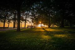 Light and shadows (matt_frankel) Tags: park morning trees light summer lake chicago sunrise point nikon shadows michigan nikkor f4 promontory d600 1635mm