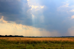 Light comes down ... (grce) Tags: light sky nature field clouds landscape