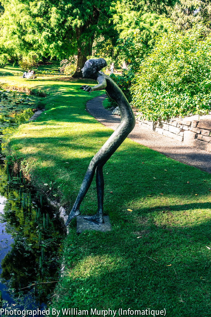 Toe In The Water By Bob Quinn - Sculpture In Context 2013 In The Botanic Gardens
