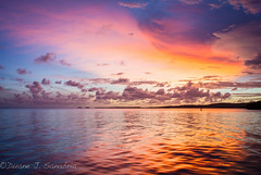 Awesome sunset, La Parguera, Puerto Rico (D.S.Photography) Tags: ocean sunset green water colors puerto cool warm rico