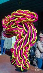RST_living statues festival arnhem_130929-45 (Robert Stienstra Photography) Tags: people netherlands festival arnhem event worldchampionship gelder livingstatues 2013 worldstatuesfestival nikond7000 robertstienstraphotography