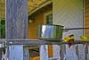 Gryta 1 (Quo Vadis2010) Tags: camping abandoned se sweden vandalism sverige camper destroy norrland disrepair vandalize campa kramfors campingground caravansite förfall gålå trailercamp northofsweden övergivet ångermanland campingplats campare caravanner kramforskommun husiförfall municipalityofkramfors vandalisera gålån housesindisrapair