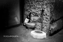 L1144800 (H.M.Lentalk) Tags: life street leica city people urban 50mm oz sydney australian australia noctilux aussie 50 asph m9 f095 black white 095 noctiluxm 109550