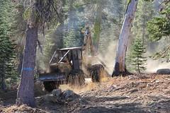 IMG_9790 (RyanP77) Tags: tree pine forest truck john saw log lift harvest logging fork sierra chain deere peterbilt skidder