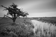 drainage channel (Lars L. Iversen) Tags: seven5
