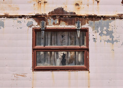 Hinges (Helen Orozco) Tags: texture window awning rust decay gap curtains nets hinges frills