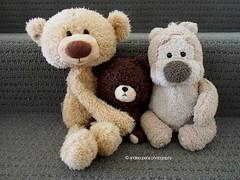 "Like ""Reese, Dewey & Malcolm"" (andiesopena) Tags: bear school friends ted cute love toy toys photography community jackie teddy bears toothpick cuddly gund tedmund bearsschool"