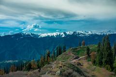 Top of Paye (talhazahid) Tags: pakistan mountains shogran siri paye medows