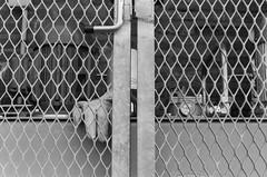 Trapped at work (pjparra) Tags: blackandwhite film work 35mm noiretblanc prison travail 135 argentique pentaxmx ilfordhp5400 pentaxsmcm50mmf17 pentaxart pierrejeanparra