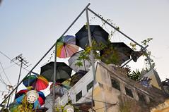 Terrasse (Dcouverte & partage) Tags: voyage agencedevoyagevietnam agencefrancophone authentique travel terrasse parapluie umbrella vietnam particulier unique