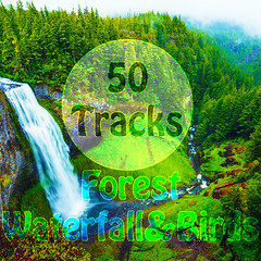 Forest WaterFall and Birds Ambience (powerambientmusictherapy) Tags: 50 tracks forest waterfall birds sounds with ambient music nature for meditation relaxation spa study amazing grace angel aromatherapy asian aura balance biofeedback bliss bloom brain stimulation breathe clean come into light contemplation cosmic fly guitar chimes violin piano strings calm