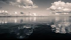 2109 b&w-2109 (manfredlang286) Tags: ostsee flensburgerfrde bockholmwik teiltonung itmeri stersjen stersjn stersen   oostzee bltico mar baltique mer sea baltic