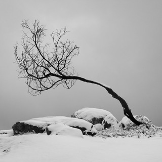 Alone on Mt Kosciuszko