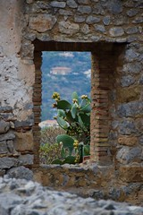 (Giramund) Tags: sicily italy cefal cactus plant frame archway