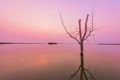 Harriet Lake Sunrise 1.0 (Jack Lefor) Tags: lake sunrise landscape scenic nature nikon colorful pink nikond810 northdakota harrietlake peaceful serene reflections