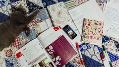 06.10.2016 (Fregoli Cotard) Tags: polish manual study dailyjournal dailyphoto dailyphotograph daily 366 366daily 366dailyproject 366days 366dailyphoto 366dailyjournal notebooks studyblr kitty studywithct cat catstudy review school university a2 366project 366photoproject 366photos 280366 280of366