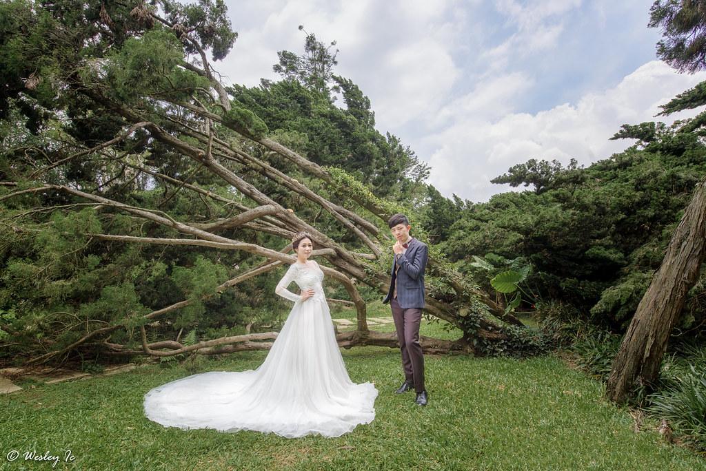 """""""""""婚攝,自助婚紗,自主婚紗,婚攝wesley,婚禮紀錄,婚禮攝影""""'LOVE11491'"""