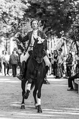 Rejoneador ByN (EDU S.G.) Tags: rejoneador rejoneo jinete horseman jockey caballo horse trote corrida blancoynegro blackandwhite galope nikon d300 jaen andalucia andalusia españa spain tradicion tradition show espectaculo