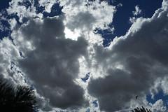 fLY (wNG555) Tags: 2016 arizona phoenix konicahexanonar28mmf35ee sky clouds