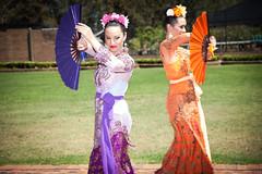 Indonesia-Emerging-3109 (jessdunnthis) Tags: indonesia australia design art futures peacock gallery emerging dance suara indonesian australian collaboration multiculturalism auburn