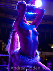 Torino erotica 2016 main stage (oddeninoandrea) Tags: 1240 28 40150 ass erotic erotismo escort fiera girls hostess hard lapdance modelle naked nude nudo olympusomdem1 portrait palco porn porno priv ritratti salone sex sexy show star striptease tits torino voyeur zuiko pro