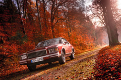79 Monte Carlo Fall Colors (Da_Hmc) Tags: 1979chevymontecarlo chevymontecarlo chevroletmontecarlo 79montecarlo monte carlo chevrolet chevy 1979 gbody trainingday training day denzel washington fall fallcolors colorfull red leafs herbst herbstlaub herbstfarben herbströte fallfoliage foliage laubfärbung laub uscar usa us car auto automobil automobile fotografie photo picture oldschool coupe sportscoupe traumhaft sun sonne fog mist steel fullmetal