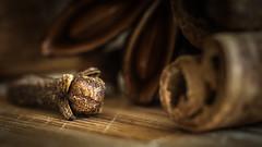 Clove. (Sylvie.) Tags: clove kruidnagel dried flower tropical tree sylvie peeters cinnamon dof depthoffield steranijs antwerpen antwerp belgium burnout star sony ilce 6000 a6000 alpha fe90mmf28macrogoss 90mm macro glhwein spices