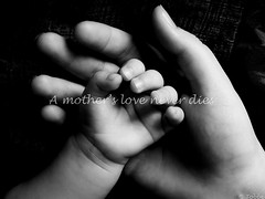A mother's love never dies (Tobbe_N) Tags: baby hands flickrchallengegroup