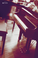 أوتار قلبي (Hind Ahmad) Tags: قطر بيانو هند