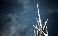 Aspire (palimpsest*) Tags: bird church scotland iso200 fife scottish spire rp 18200mmf3556 metalsky nikond300 focallength82mm 11250secatf50