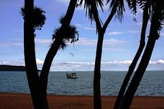 Lago Guaba (Luiz Filipe Varella) Tags: praia rio de lago grande klein do capital porto dos lagoa filipe alegre guaba outono sul ipanema luiz paisagens patos gacha varella gachos portoalegrenses
