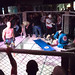 "Knockout (MMA Medellín) • <a style=""font-size:0.8em;"" href=""https://www.flickr.com/photos/18785454@N00/7227318260/"" target=""_blank"">View on Flickr</a>"