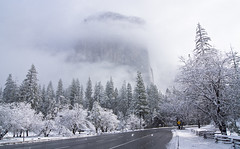 Monolith in the Mist (Luvin' the light) Tags: road trees snow clouds fence yosemite elcapitan clearingstorm naturallydesaturated