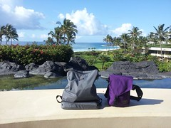 D and C's anniversary trip to Kauai and the bags they took (TOM BIHN) Tags: packing cube backpack tombihn cafebag tombihnbags mediumcafebag