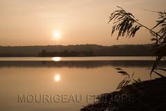20091029_Etangs de Cergy_009.jpg (phmouri2013) Tags: automne paysage arbre etang environement